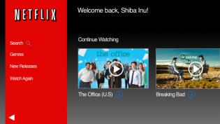 Netflix Page