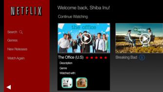 Netflix: Show description